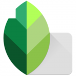 Download Snapseed for PC (Mac And Windows 7/8/10)
